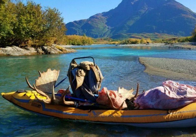 Alaska Bear Hunt and Moose Hunt - Dillingham