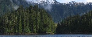 Alaska Wilderness Fishing - Sitka
