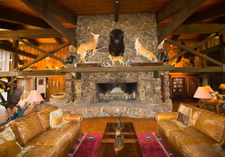 New Mexico Luxury Elk Hunt