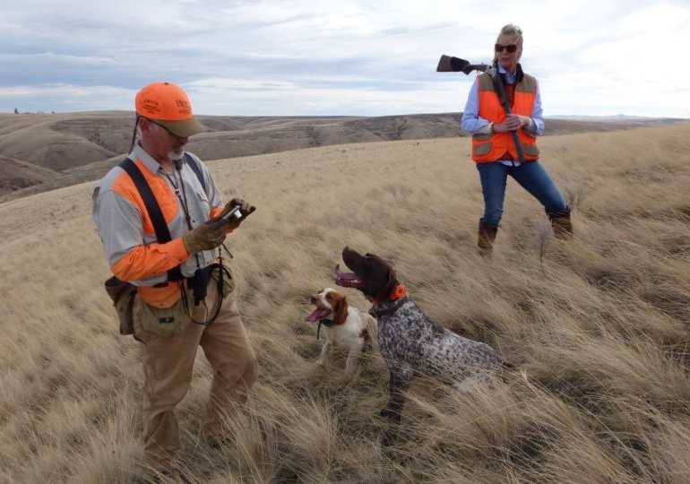 Oregon Luxury Upland Hunting