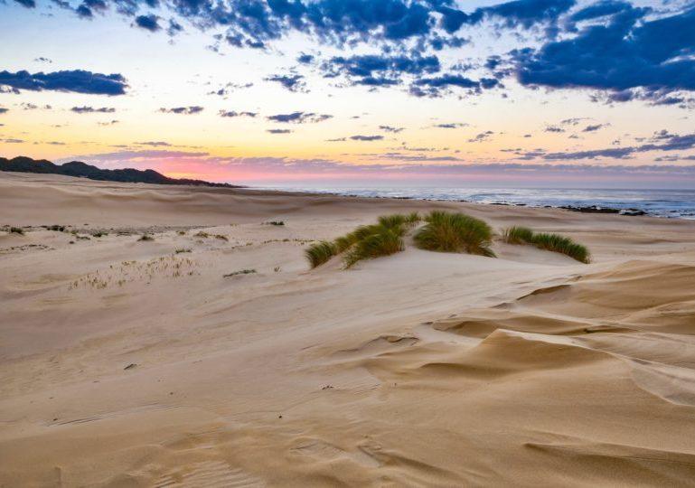 South Africa Hunting Safari Beach
