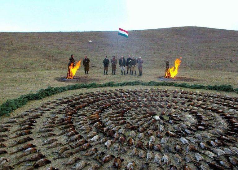 Hungary Luxury Driven Pheasant Hunt