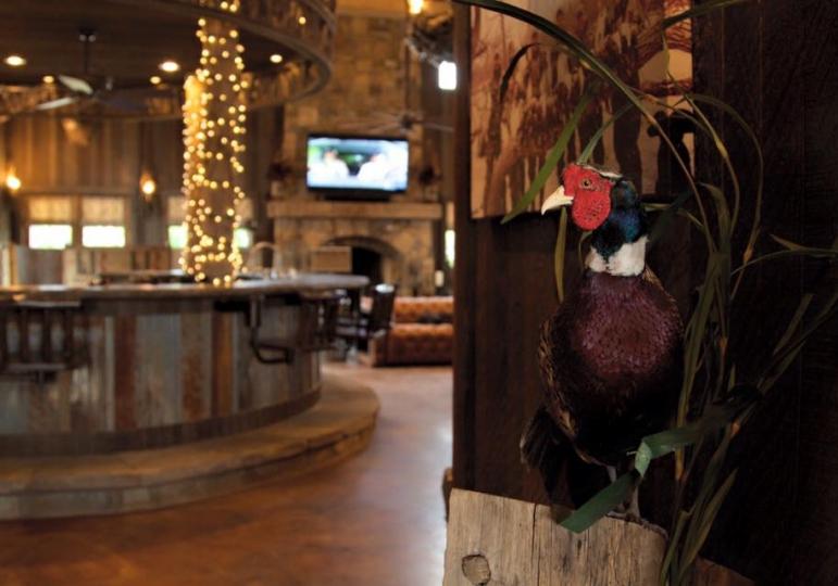 Kansas Luxury Pheasant Lodge & Waterfowl