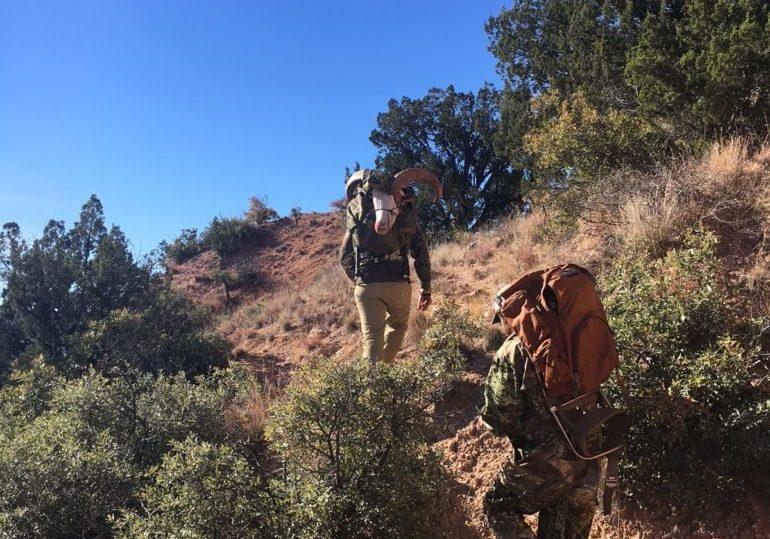 Texas Aoudad & Mule Deer Hunt - Palo Duro