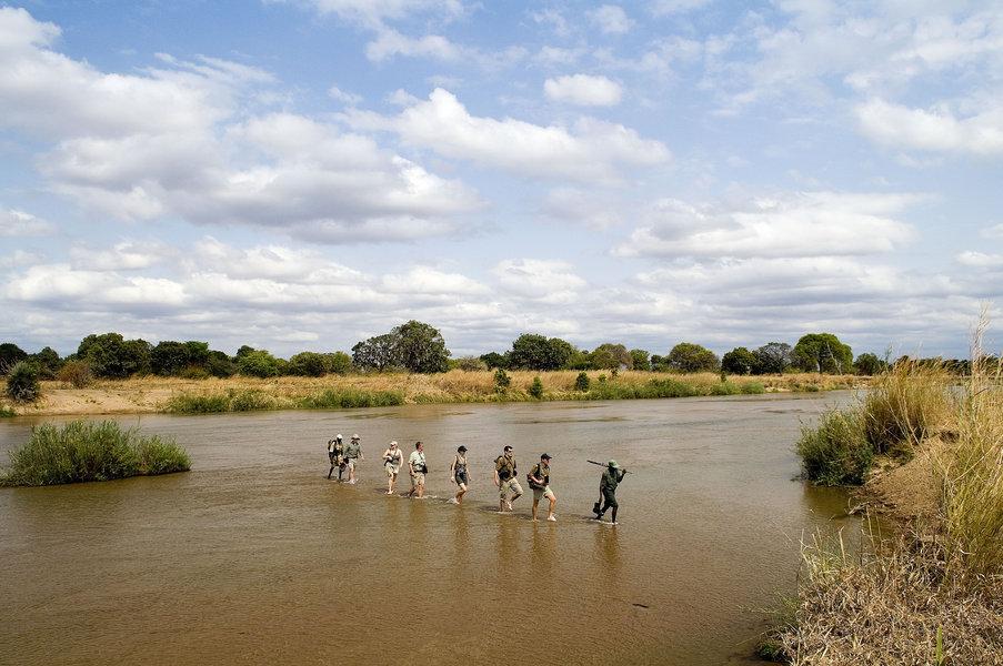Africa Walking Safari